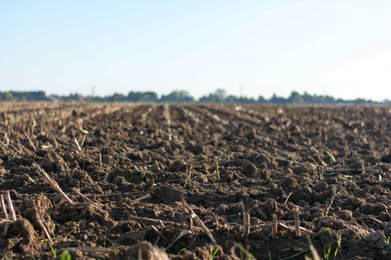 HSS | Hrvatski sabor | Poljoprivredna proizvodnja