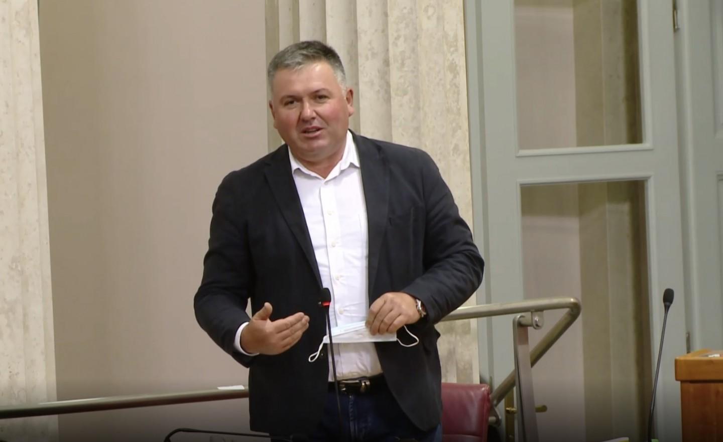 HSS | Hrvatski sabor | Željko Lenart | Rasprava tržište električne energije